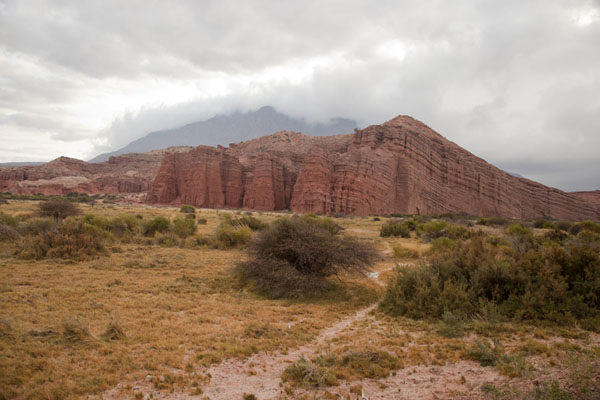 Yellow grass, the Castillos red rock formation, and grey skies | Quebrada de las Conchas | Argentina