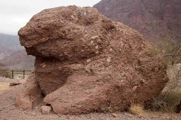 The Toad (El Sapo), a strange formation in the shape of a toad | Quebrada de las Conchas | Argentina