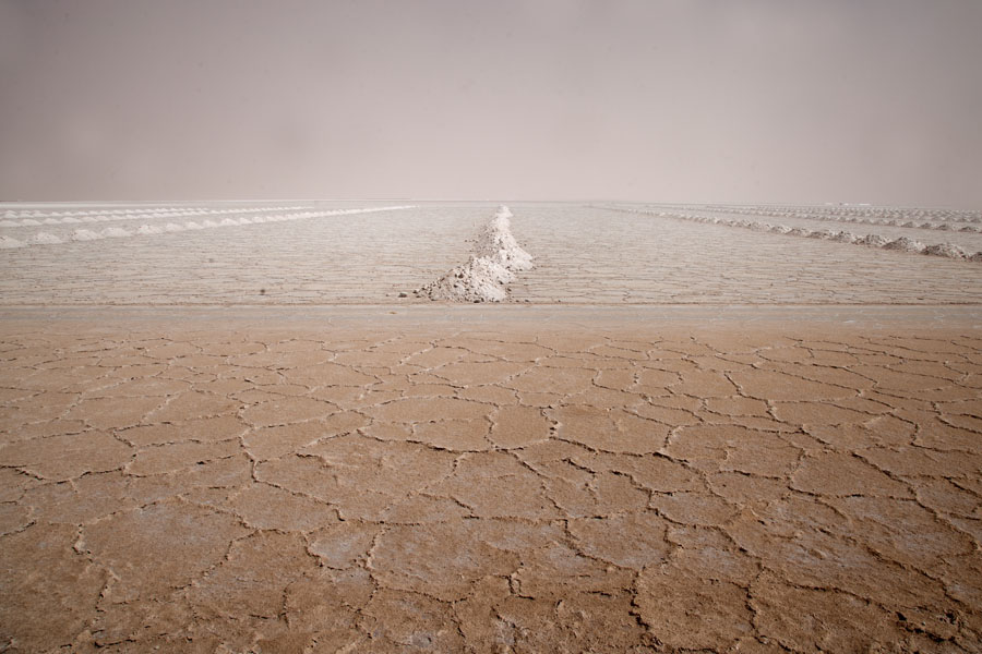 Rows of salt mounds on the crusty surface of Salinas Grandes | Salinas Grandes | Argentinië