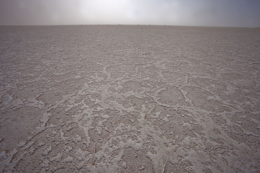 Photo de l'Argentine (Salt surface stretching until the horizon at Salinas Grandes)
