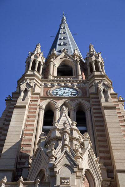 Looking up the bell tower of the Cathedral of San Isidro | San Isidro Historic Town | Argentina