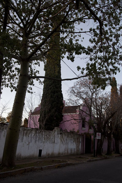 Street with trees and pink house in San Isidro | San Isidro oude stad | Argentinië