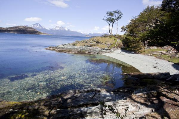 Small bay with beach and crystal-clear sea, snow-capped mountains in the background | Tierra del Fuego National Park | Argentina