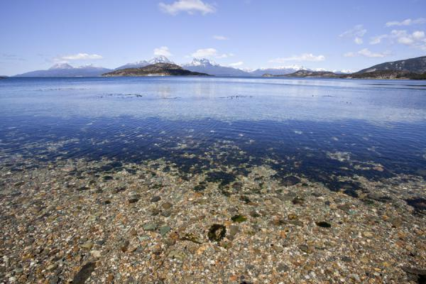 Crystal-clear water at a beach in Bahía Ensenada | Tierra del Fuego National Park | Argentina