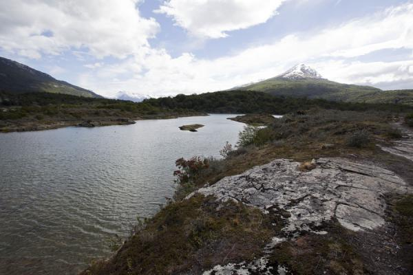 Picture of Landscape near the very end of Tierra del Fuego, Lapataia