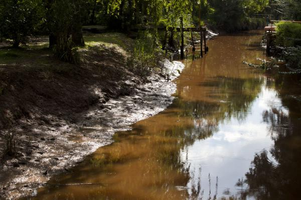 Canal with muddy banks and wooden stairs | Tigre Paraná Delta | Argentina