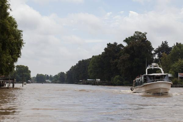 Picture of The wide Sarmiento river near Tigre