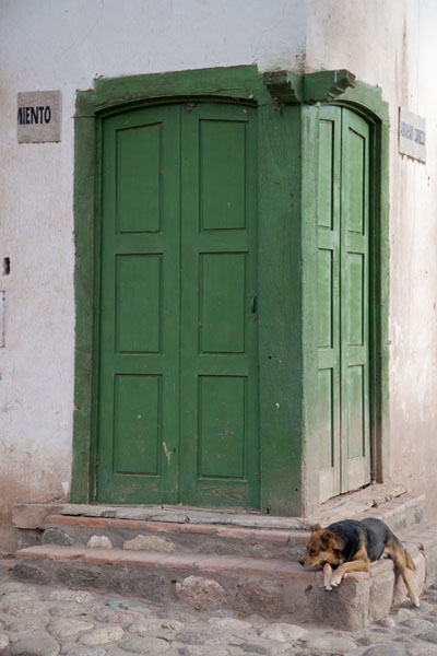 Foto di Dog sleeping at a typical corner door in the village of MolinosValles Calchaquies - Argentina