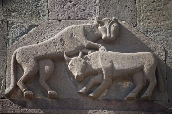 Picture of Carving on the wall of the Geghard Monastery with a lion attacking an ox