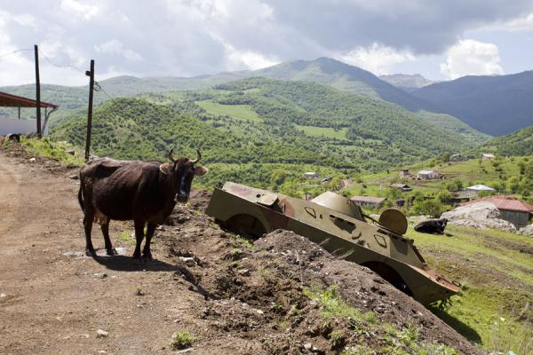 Photo de Cow and tank in the village of Karintak, just below ShushiKarkar gorge hike - Armenia