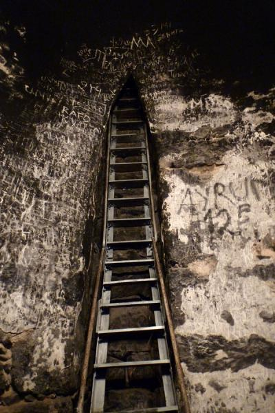 Ladder leading down to the pit where Gregory the Illuminator was held prisoner for 13 years | Monasterio de Khor Virap | Armenia