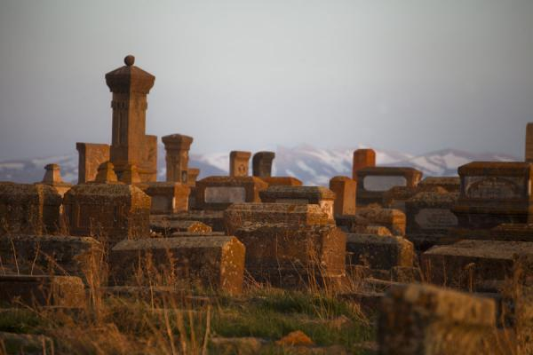 Warm sunlight shining on the tombstones of Noratus with snowy mountains in the background | Noratus chatsjkars | Armenië