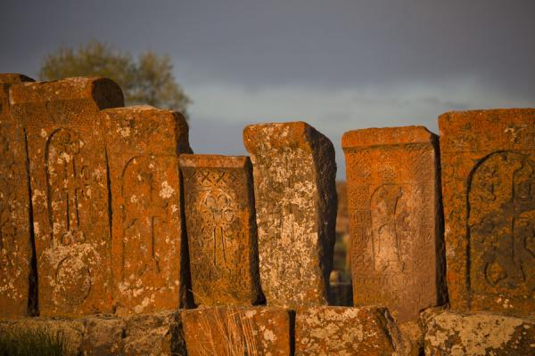 Row of khachkars basking in the late afternoon sunlight | Noratus chatsjkars | Armenië