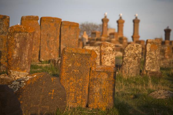 Foto di Khachkars standing on the cemetery of Noratus, with graves and gulls - Armenia - Asia