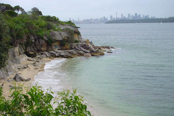 Foto van Lady's Bay on the foreground, Sydney skyline in the backSydney Haven - Australië