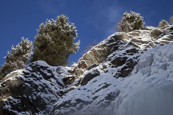 Looking up part of a frozen waterfall and snow-covered rocks and trees | Arrampicare sul ghiaccio in Tirol | Austria