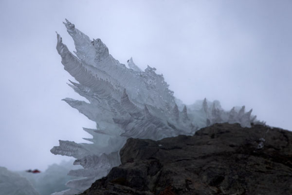 Picture of Icicles everywhere on the cliffs where frozen waterfalls are to be found - Austria - Europe