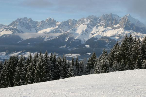 Slope, trees and Kaiser mountains | St. Johann Skiing | Austria