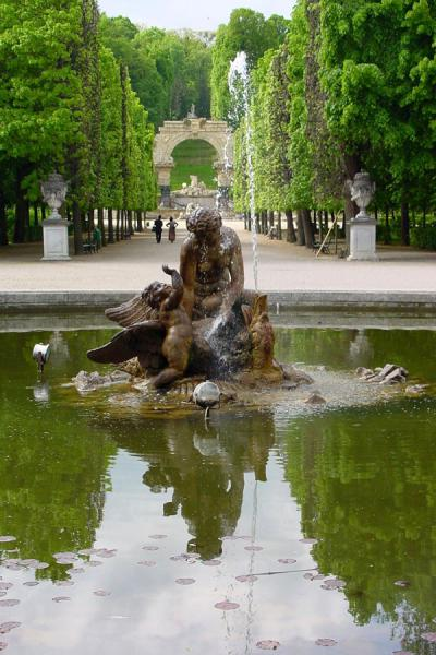 Yet another fountain of the park | Schönbrunn Palace | Austria