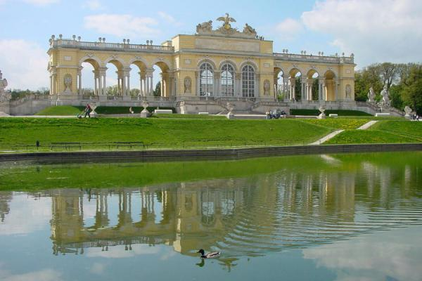 Duck swimming through the reflection of Glorietta | Schönbrunn Palace | Austria