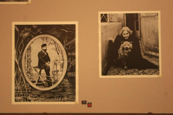 Close up of some of the pictures in the museum | Sigmund Freud Museum | Austria