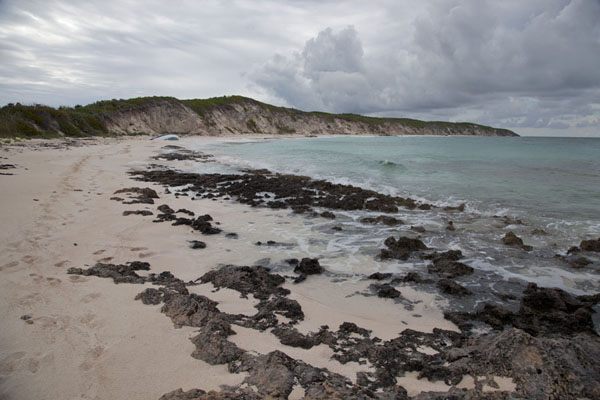 Photo de Bahamas (The empty beach just north of Little Winding Bay)