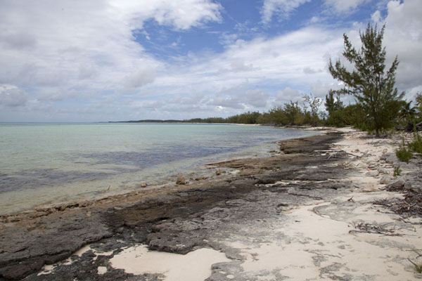 The beach at Port Howe, looking west | Columbus Point | Bahamas