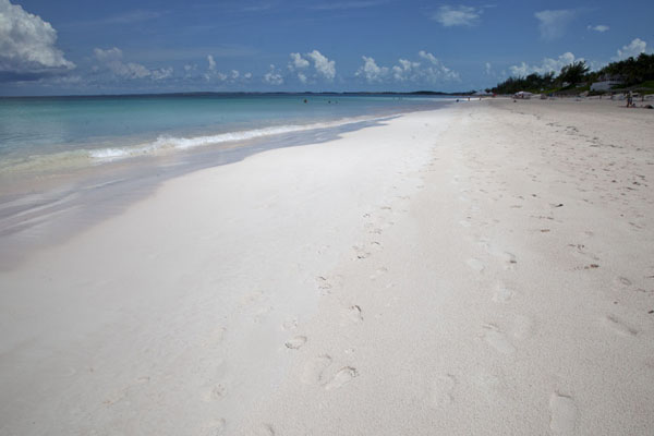 Foto van World-famous Pink Sands Beach on the eastern side of Harbour IslandHarbour Island - Bahamas