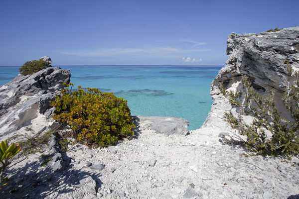 Foto van View of the Atlantic side of Eleuthera island at Eleuthera PointLighthouse Beach - Bahamas