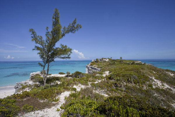 Foto van Looking south at the southernmost point of Eleuthera IslandLighthouse Beach - Bahamas