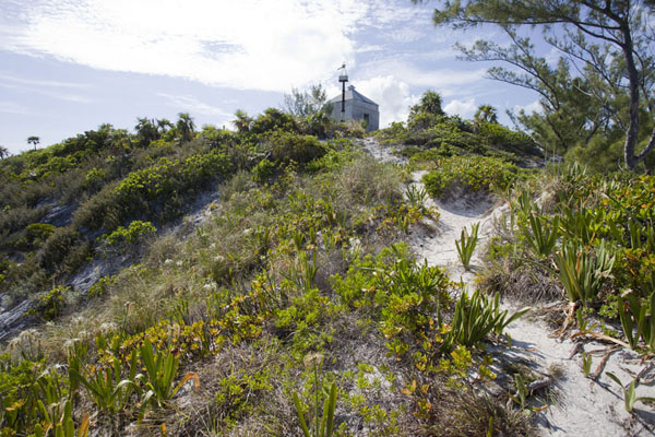 Foto van Dunes and lighthouse at Lighthouse PointLighthouse Beach - Bahamas