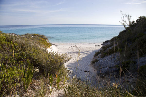 Foto van Small Beach off Lighthouse PointLighthouse Beach - Bahamas