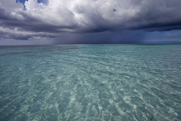 Picture of Showers at sea seen from Man o War Point