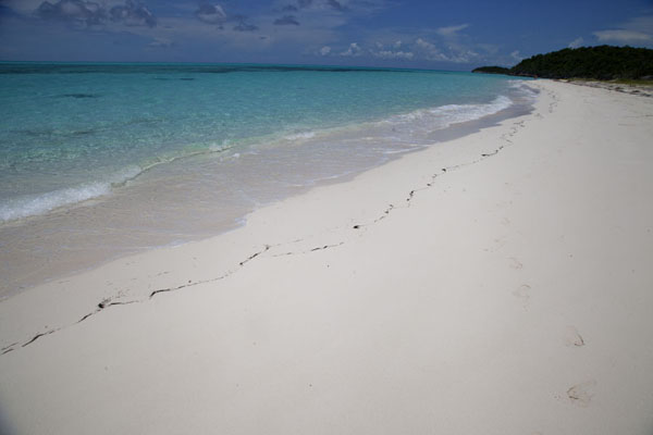Photo de Bahamas (Empty Port Royal beach stretches for miles south of Man o War Point)
