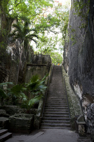 The Queen's Staircase is the fastest way up to Fort Fincastle from downtown Nassau | Nassau Old Town | Bahamas
