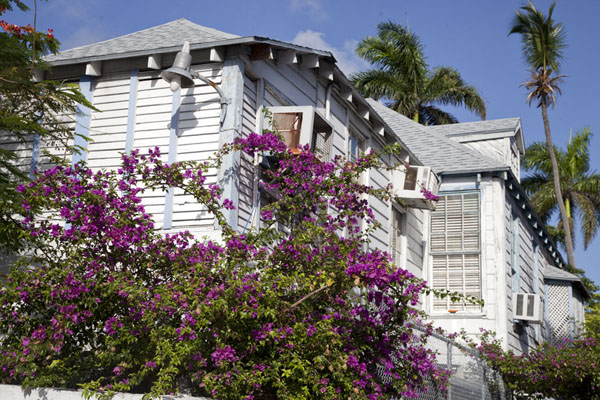 Picture of Wooden house in Nassau surrounded by flowers - Bahamas - Americas