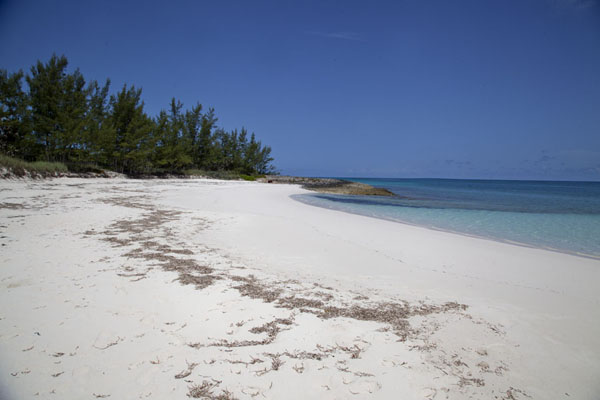 Foto van Tay Bay Beach lies a minute away from Preachers CavePreacher's Cave - Bahamas
