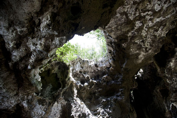 Daylight enters Preachers Cave through holes in the ceiling | Preacher's Cave | 巴哈马群岛