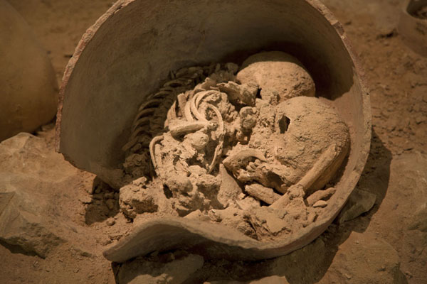 Human remains in a broken jar | Bahrain National Museum | Bahrain
