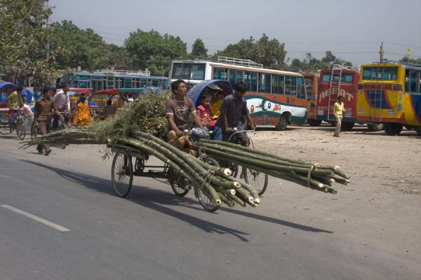 Bamboo can also be transported by bike, no matter how long | Bangla Pedal Power | Bangladesh