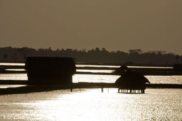 Foto di Bangladesh (House on wooden poles in a landscape of water)