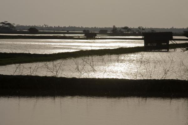 Picture of Khulna water landscape (Bangladesh): Water divided by strips of land