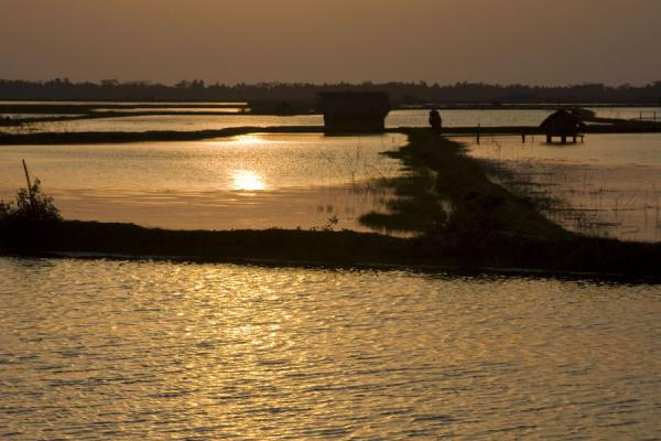Foto de Bangladesh (Water, strips of land, and houses in a sunset)