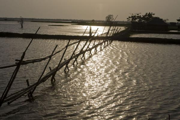 Foto van Bamboo bridge connecting a house with the outside worldKhulna - Bangladesh