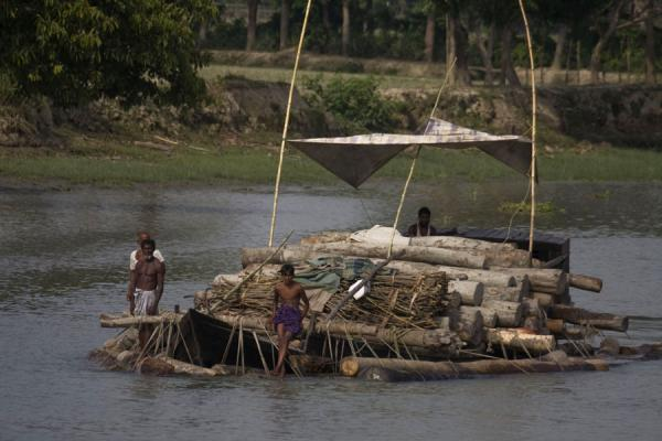 Transporting wood on one of the many rivers | Rocket boat ride | Bangladesh
