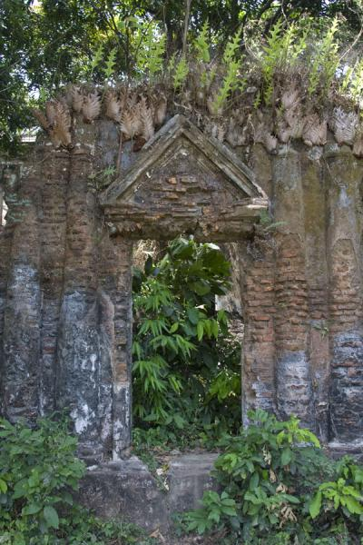 Foto van Old Shiva shrine, covered by vegetationSonargaon - Bangladesh