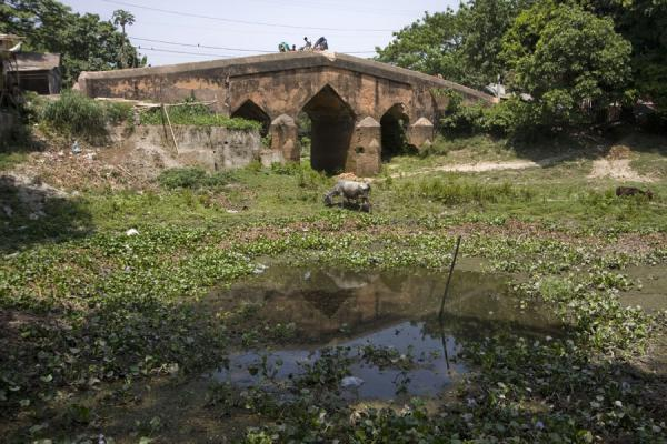 Picture of Ancient stone bridge in the town of Sonargaon - Bangladesh - Asia