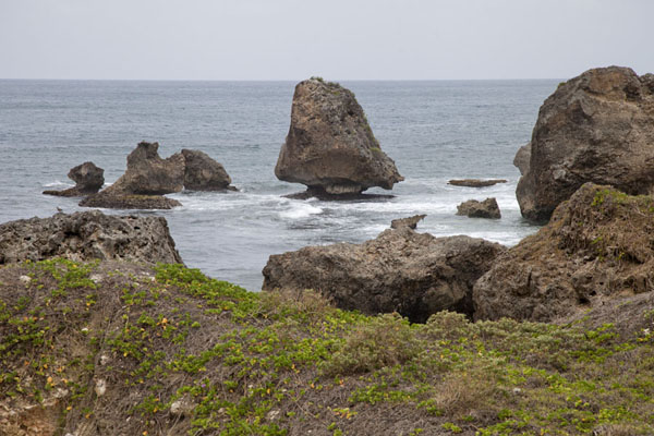 Foto van Rock formations off the east coast of BarbadosBarbados oostkust - Barbados