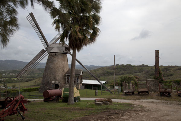 Picture of The mill at Morgan Lewis still operates - Barbados - Americas