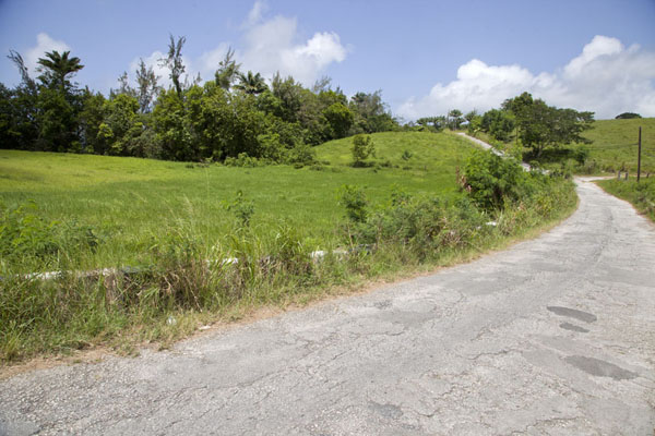 Road in the central part of Barbados - 巴贝多